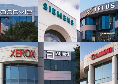 World-class companies